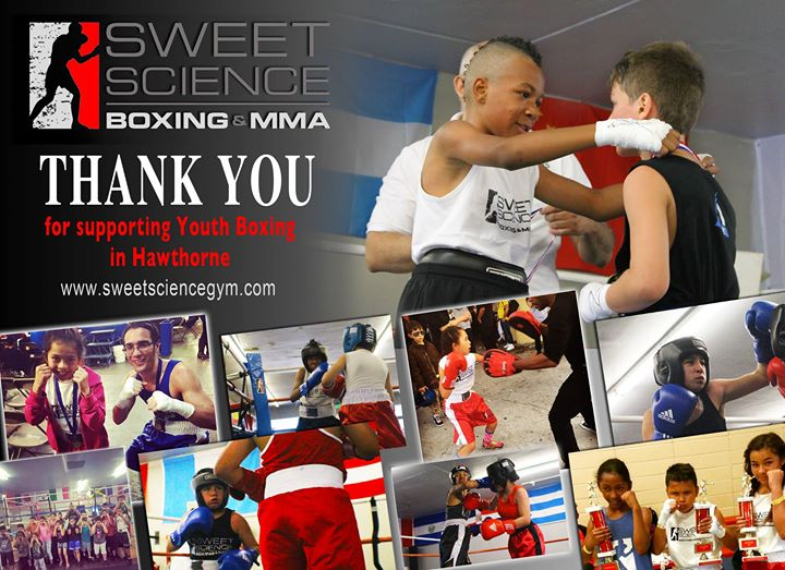 Sweet science boxing mma gyms near me